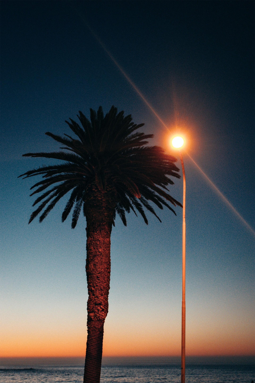 Florian Schüppel SOUTH AFRICA 2018
